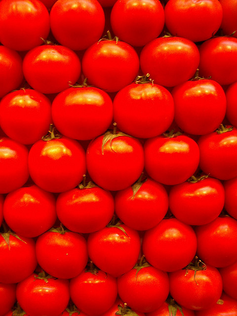 Too good to be good: perfect tomatoes cost more than any civilized nation should be prepared to pay.