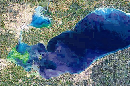Algae blooms on Lake Erie, virtually covering its Eastern bay in this August photo from space, are killing the lake. Again. And we know who the killer is.