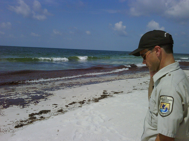 Bon Secour National Wildlife Refuge Manager Jereme Phillips reports oil on a refuge beach in Alabama in June of 2010. Three years later, the hits just keep on coming. (Photo by Jennifer Strickland USFWS)