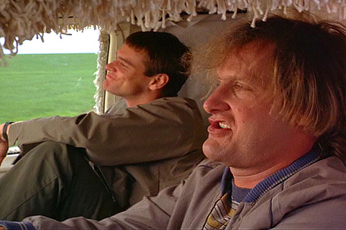 To be a success in today's America, it helps to either dumb or dumber. Why is that? (Photo by insomniacuredhere/Flickr)
