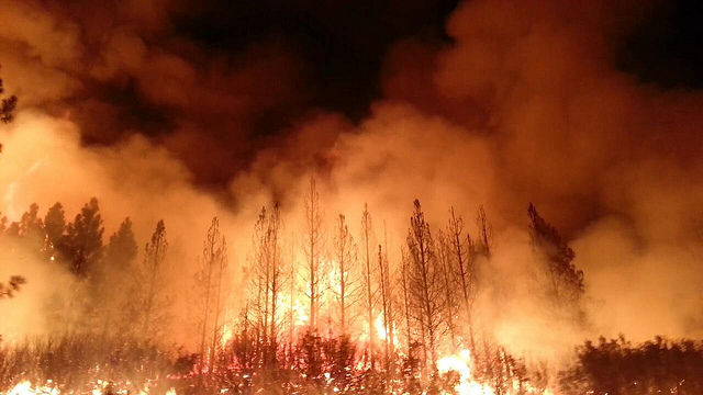 The Rim Fire in California's Sierra Nevada burned over a quarter million acres in 2013. Seemed amazing then, now it's just another day in the woods (and on the tundra). (US Forest Service photo)
